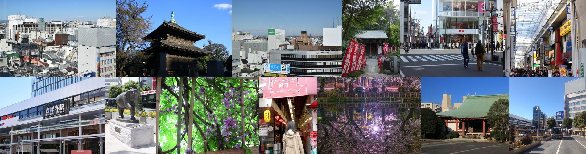 武蔵野の風景